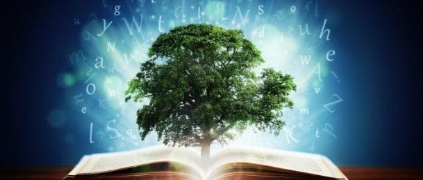 Zrak, voda, drvo i vatra – elementi koji nam upravljaju životima