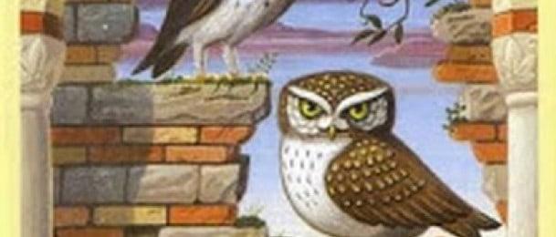 Lenormand kombinacije: Zmija + Ptice