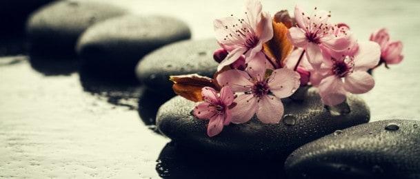 Zalijevanje sobnog bilja