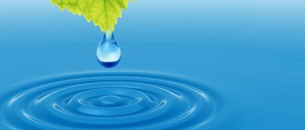 Biljke koje čiste zrak i tjeraju san na oči