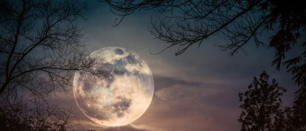 Mitologija snova