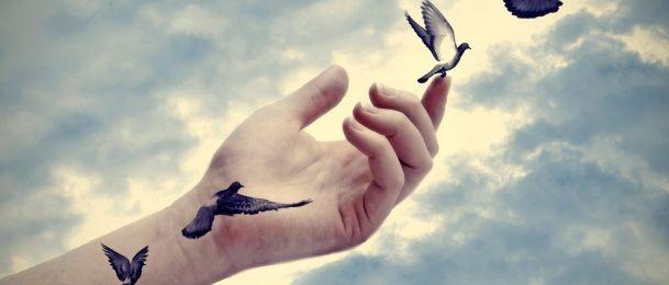 Vjerovanje o pticama