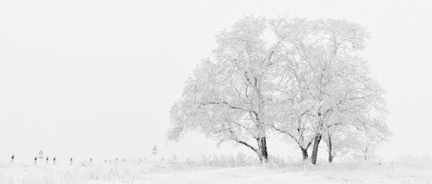 Zdravstvene blagodati zime