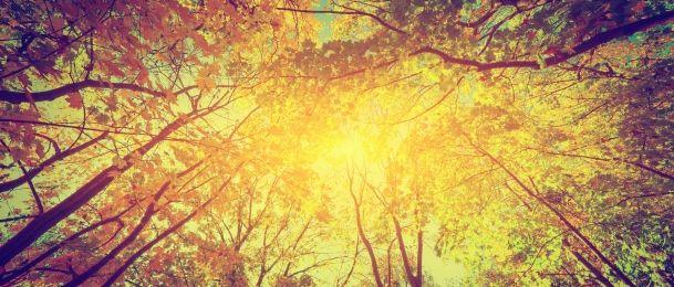 Povoljan aspekt sunca i saturna