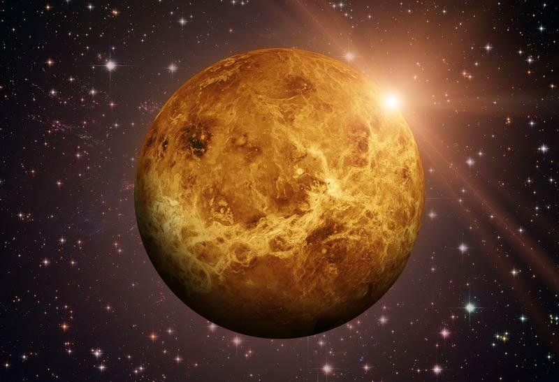 Venera u astrološkim kućama